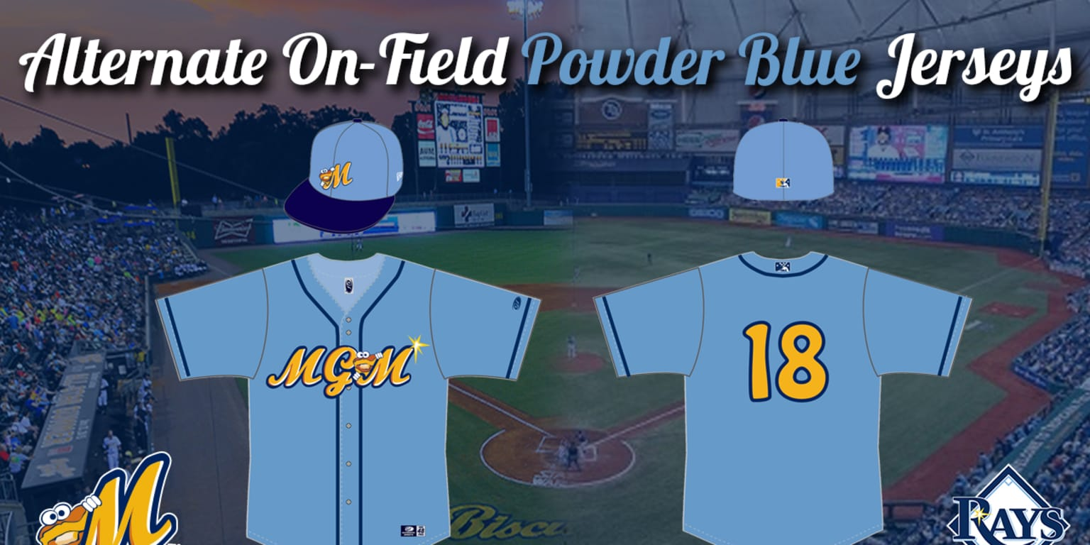 Montgomery Biscuits An...