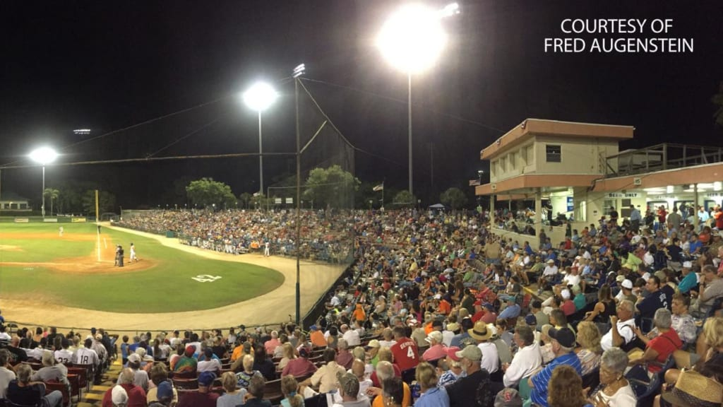panoramic_holman_stadium_photo__large