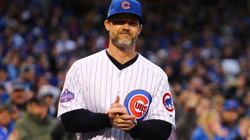 David Ross next Cubs manager