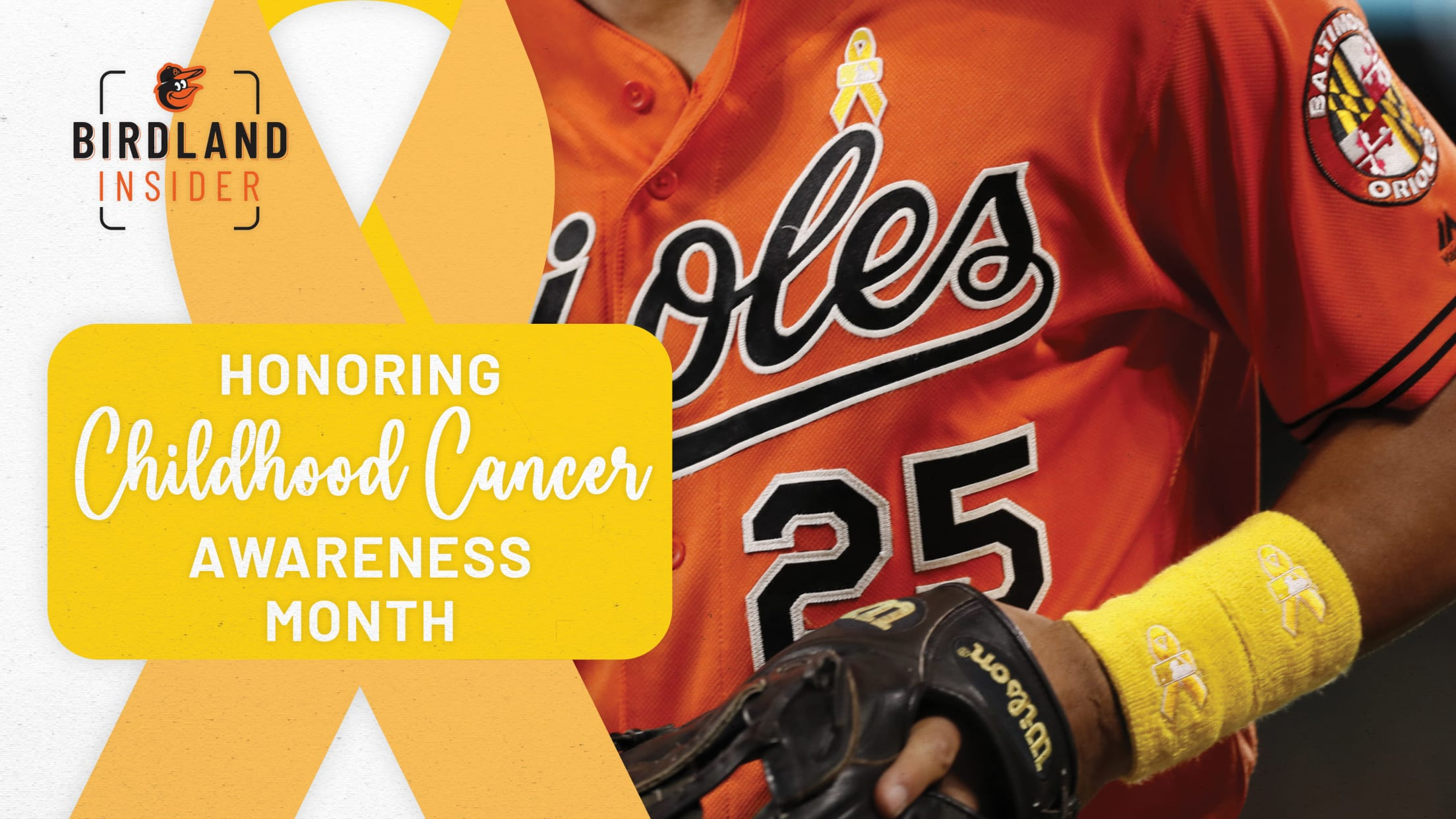 bal-honoring-childhood-cancer-awareness-month-header