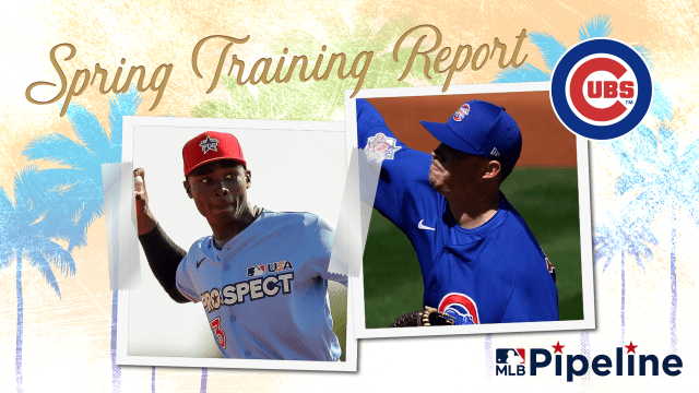 Cubs Minor League Spring Training report