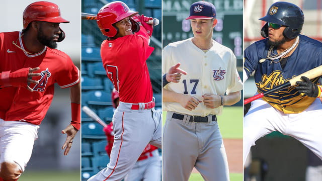 Here's a look at the Angels' farm entering 2020
