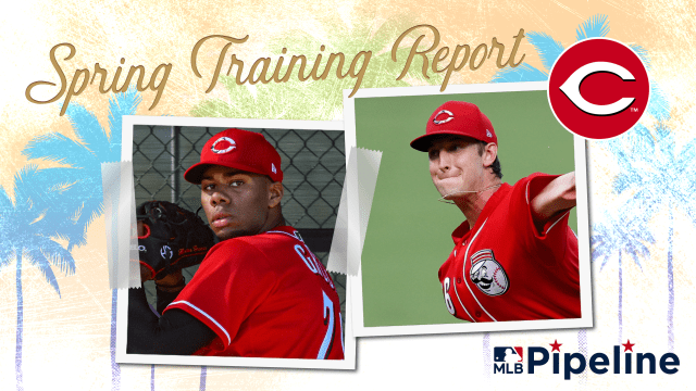 Reds Minor League Spring Training report