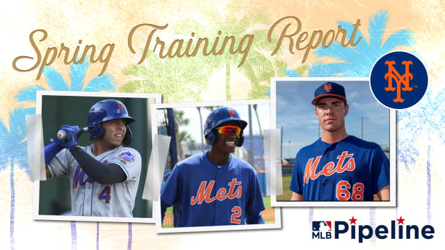 Mets Minor League Spring Training report