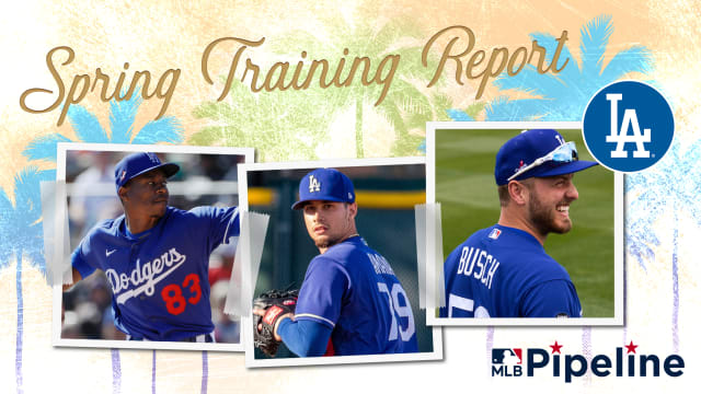 Dodgers Minor League Spring Training report