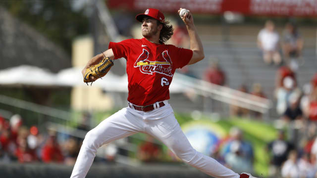 Cardinals prospect report from Spring Training