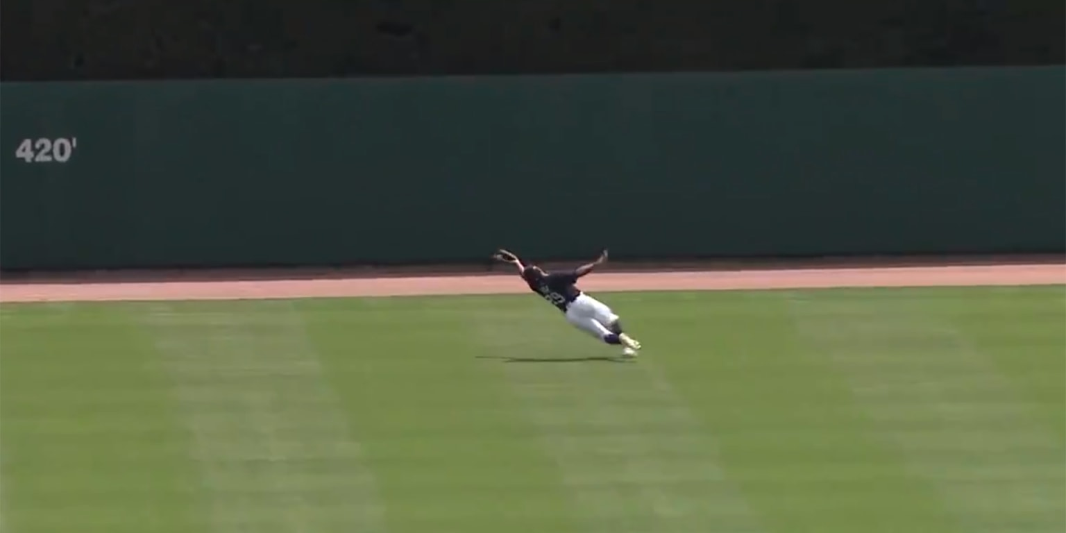 Even Willie Mays would be stunned by this catch