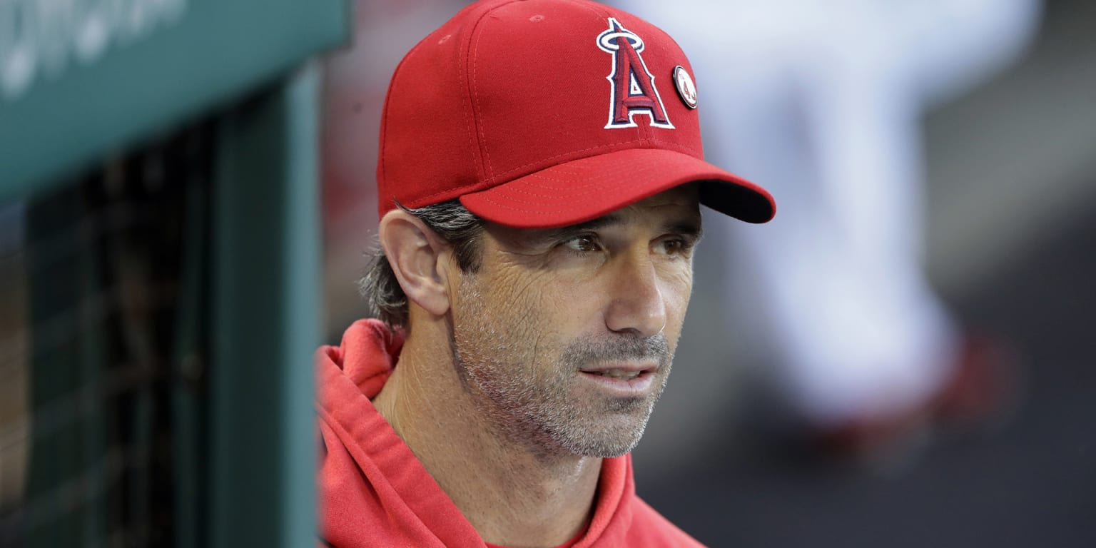 Ausmus draws positives from 'trying' season