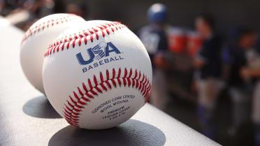 Champs AZ baseball generic