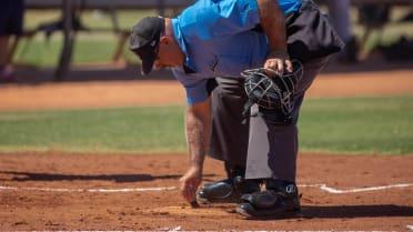 Umpire 01