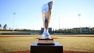 NHSIPreview2Trophy